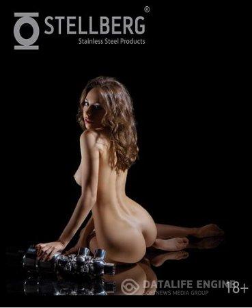 Stellberg - Official Calendar 2014