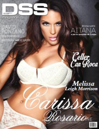 DSS Magazine - December 2013