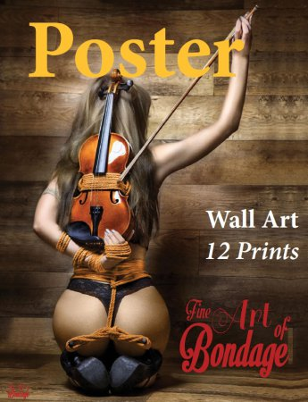 Fine Art of Bondage - 12 Bondage Poster Set 2017